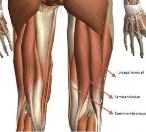 ¿Cómo recuperarse de una lesión de isquios?